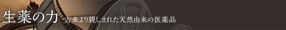 牛黄(ゴオウ)