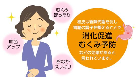 桂皮は新陳代謝を促し、胃腸の調子を整えることで消化促進・むくみ予防などの効果があると言われています。